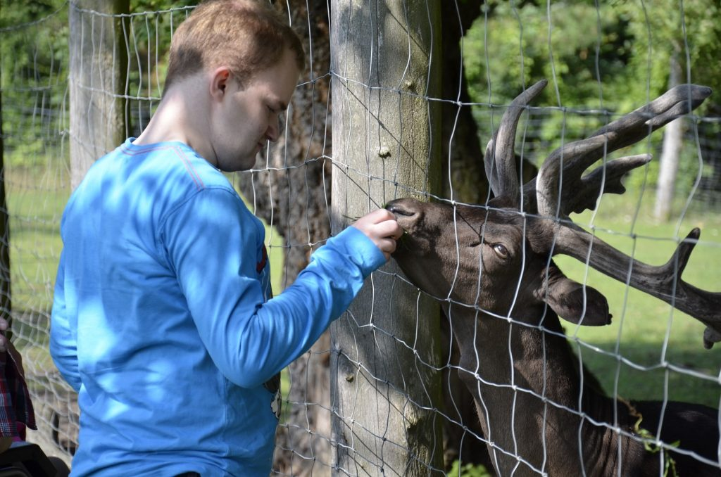 Robert in einem Tierpark. Er steht an einem Zaun und füttert einen Hirsch. Die Sonne scheint.