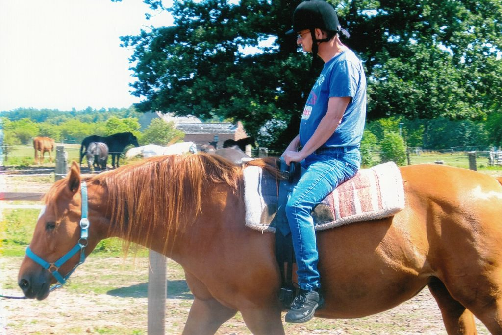 Matthias sitzt auf einem braunen Pferd. Er trägt einen Reiterhelm. Im Hintergrund weitere Pferde und ein Baum. Die Sonne scheint.